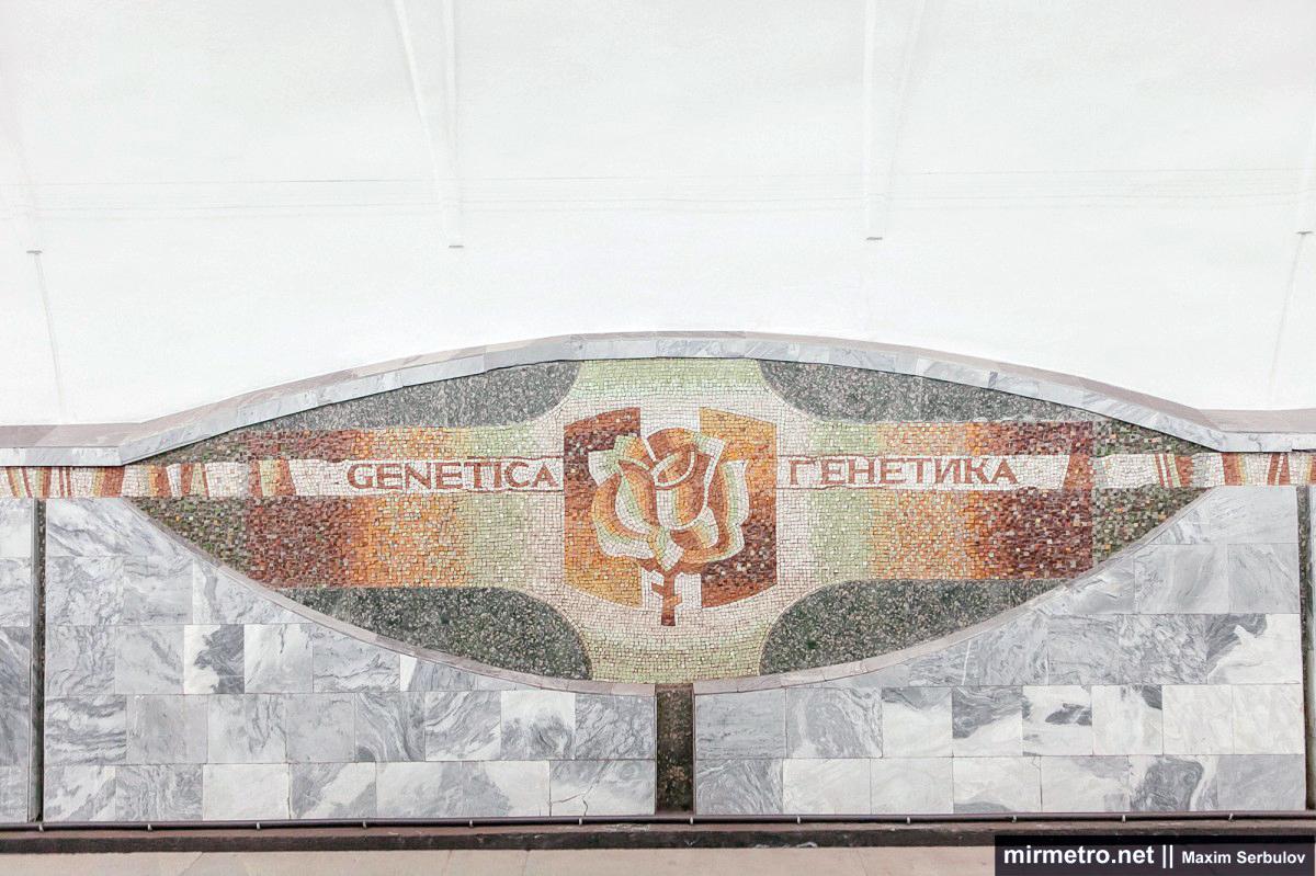 станция академика павлова мозаики